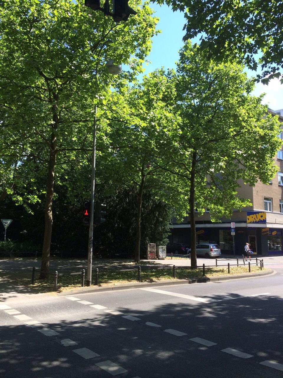 Innerer Grüngürtel Köln